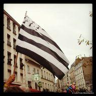 Fête des Vendanges de Montmartre : le live 0041