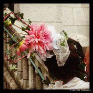 Fête des Vendanges de Montmartre : le live 0121