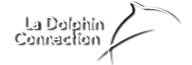 logo la dolphin connection