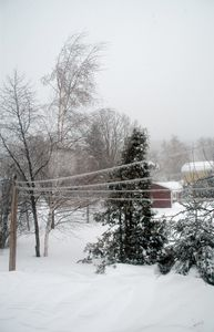 tempête du 7 mars 2011 020