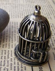cage-argent.jpg