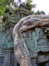 Temple Ta Phrom (30)