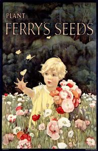458692 Ferrys-Seeds-copia-1