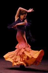 Expo flamenco MARIA PAGES - Copyright M.MAIRET