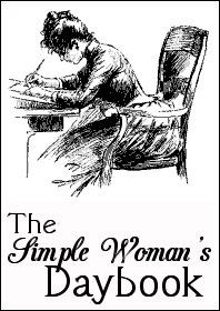 http://img.over-blog.com/198x280/2/79/04/84/expo/simple-woman-daybook-large.jpg