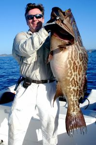 broomtail grouper canto (396x600)