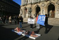meat-tray-protest-2010.JPG