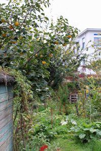 Jardin Gerland 006