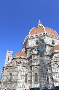 florence 9029