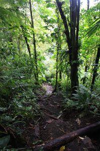 Costa-Rica 2658