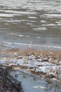 Sous la neige 2012 B5