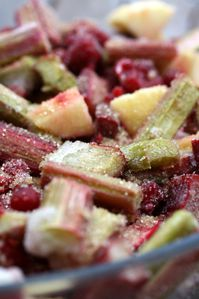 crumble rhubarbe fruits rouges (4) modifié-1