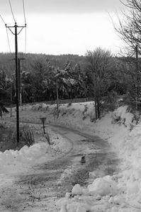 neige-1er-decembre-2012 7619