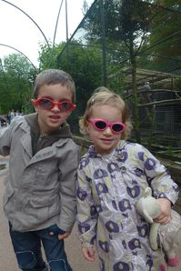 zoo lille (3)