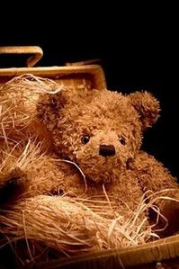 ours-peluche