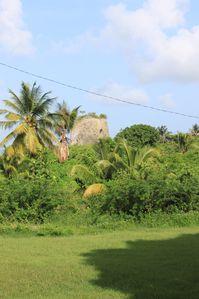 moulin d'Audoin 1