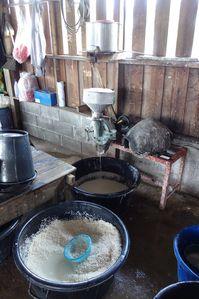 Fabrication nouilles de riz - Thailande