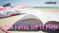 plage-2.png
