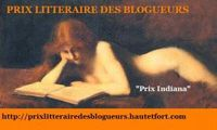 Prix-litt-raire-blogueurs.jpg