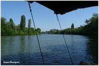 Rueil berges de Seine
