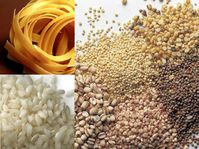 pates-riz-cereales