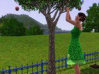 sims 3 djoumdjoum family photofarfouille screenshot (798)