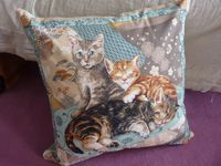 Coussin-chats