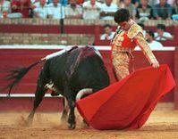 corrida-taureau-arene-rouge.jpg