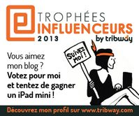 banniere-trophees-influenceurs-2013.jpg