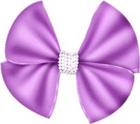 CAJ.SCR.FR-PURPLE-FASHION-72.png