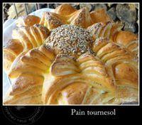 pain-tournesol