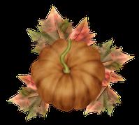 Potiron-feuilles.png