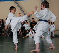 Mon-fils-cest-le-karate 0351