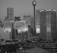 Sydney-by-night--photo-Lacerta-tronquee--en-gris-jpg