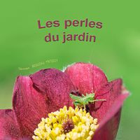 livre-enfant-nature2