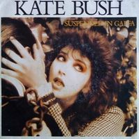 Kate Bush - Suspended in gaffa 45T