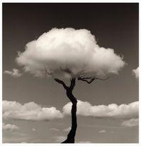 chema-madoz-arbre-nuage.jpg