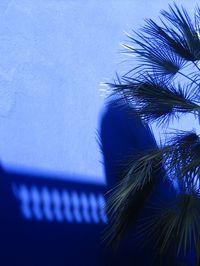 Maroc villa Majorelle photos JF. Candeille (3)