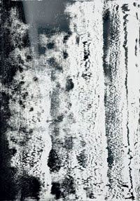 richter2012-30_200.jpg