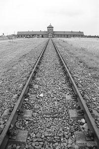 trains, sncf et déportation