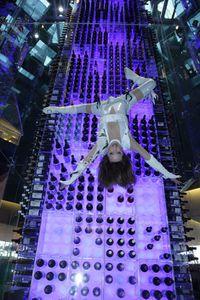 Radisson-wine-tower-thumb