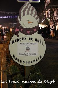 Steph_Handshuheim24112012b.JPG