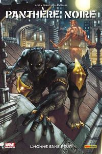 100p100-marvel-panthere-noire.jpg