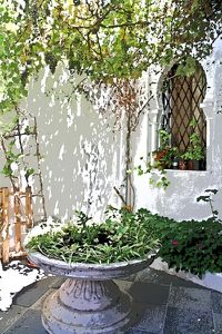 patio-andaluz-blog.jpg
