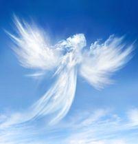 Anges---002.jpg