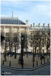 Paris Place Dauphine 5