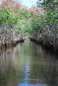 Floride-2010 0460