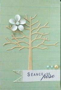 detail-arbre.JPG