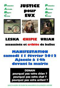 corse-manif-11-fevrier-2012-.jpg