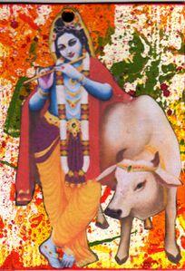 836-Krishna.jpg